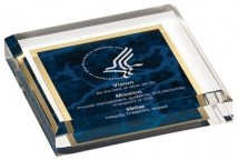 Corporate Award - Acrylic Collection - Acrylic Awards